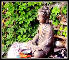 "We are creating a Zen corner in our garden and this Buddhist is currently sitting there. We leave offerings and whenever we glance in the many Buddhas gracing our home and yard we are reminded to focus on inner peace and to live within the ""now"" of our moment by moment experiences. Check out our blog called zen in the garden: http://bodhisttvabuddhism.blogspot.ca/2012/04/zen-in-garden.html"