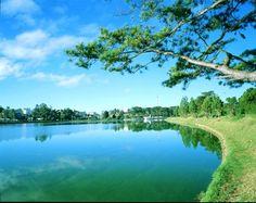 Du lịch Đà Lạt – Chơi gì? Ở đâu? #dalat #lamdong #travel #vietnam #vacbalo.com #dulich #wanderlust
