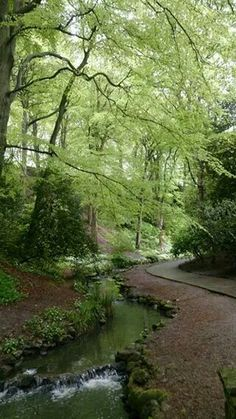 Peasholm Park Scarborough England, Yorkshire England, Country Roads, Memories, River, Park, Outdoor, Image, Outdoors