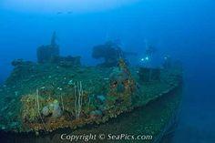 Diver over Deck of USS Carlisle Attack Transporter, Marshall Islands, Bikini Atoll, Micronesia, Pacific Ocean