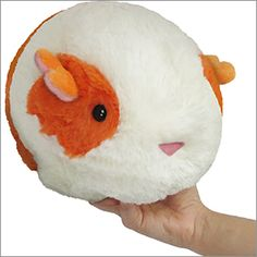 Kawaii plush stuffed toys - cuddly and furry friends Squishable guinea pig! I want one!!!