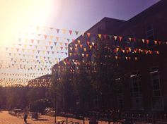 Happy Friday everyone! What a scorcher we have here on @University of Leeds UK campus today! #Leeds #summer