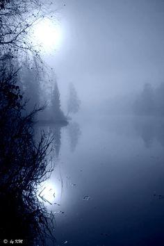 Misty Blue- © Kari Meijers