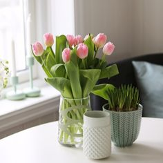 Purodeco Feng Shui on Instagram #purodecohome #tulips