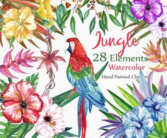 Watercolor Floral Clipart: FLORAL CLIP ART Parrot by LeCoqDesign
