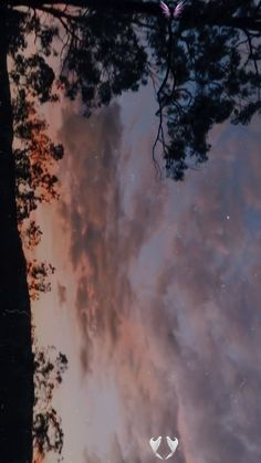 sunset aesthetic  <br> Aesthetic Movies, Night Aesthetic, Nature Aesthetic, Aesthetic Gif, Aesthetic Videos, Aesthetic Pictures, Tumblr Aesthetic Photography, Tumblr Photography, Nature Photography