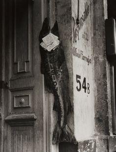 Alvarez Bravo - Big Fish Eat Little Ones 1932