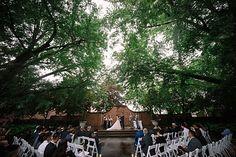 Photo from Cecilia & Benson collection by Amgfotography Dolores Park, Wedding Photos, Garden, Travel, Collection, Wedding Pics, Voyage, Garten, Trips