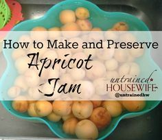How to Make Apricot Jam - Simple Canning Instructions Without a Pressure Cooker!