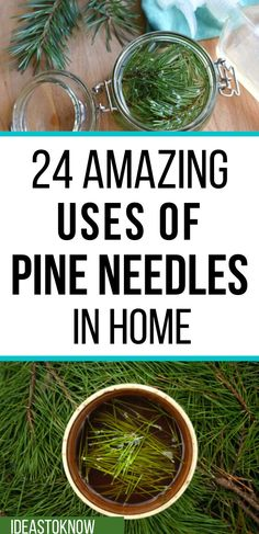 Diy Home Cleaning, Homemade Cleaning Products, Pine Needle Crafts, Pine Needle Baskets, Pine Needles, Going Natural, Useful Life Hacks, Medicinal Plants, Kraut