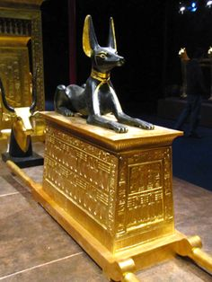 Anubis,Egyptian God of the Dead guarding the Chest. Found in Tutankhamun's tomb. He was an Egyptian pharaoh of the 18th dynasty (ruled ca. 1332 BC – 1323 BC in the conventional chronology), during the period of Egyptian history known as the New Kingdom. He is popularly referred to as King Tut.