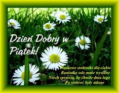 Good Sentences, Good Morning, Happy, Flower, Pictures, Buen Dia, Bonjour, Ser Feliz, Good Morning Wishes