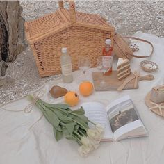 Nature Aesthetic, White Aesthetic, Aesthetic Food, Aesthetic Vintage, Aesthetic Backgrounds, Aesthetic Wallpapers, Picnic Date, Photo Wall Collage, E Type