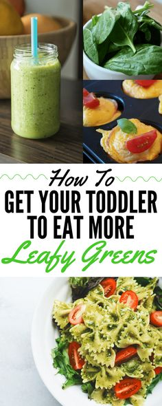 Trying to get your toddler to eat more greens? This post has a TON of easy, family-friendly recipe ideas that make eating leafy greens easy and delicious! Click for a list of ideas!