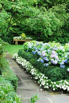 15 top and most beautiful hydrangeas landscaping ideas to inspire secret garden garden border plants garden borders garden paths backyard walkway backyard mightylinksfo
