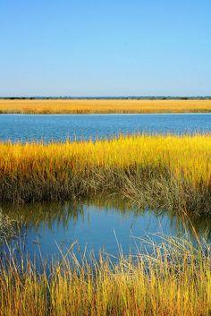Beaufort, South Carolina Lowcountry http://www.stopsleepgo.com/vacation-rentals/south-carolina/united-states