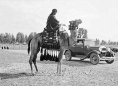 Palestine -  Hadjim Car Beersheba