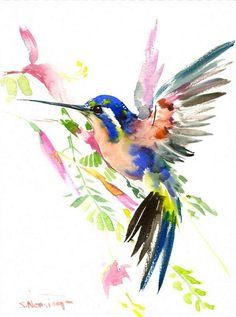 Bird Painting hummingbird original watercolor 12 x by ORIGINALONLY