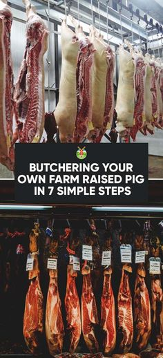 Butchering Your Own Farm Raised Pig in 7 Simple Steps