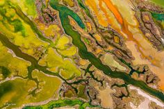 The art of algae by Pere Soler, Winner From the Sky category #WPY51 #WildlifePhotographeroftheYear