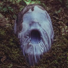 """As fotografias assustadoras de Christopher McKenney  Christopher McKenney é um fotógrafo conceitual da Pensilvânia, especializado em fotografia surrealista com a temática """"horror"""". Christopher é um artista conhecido e publicado internacionalmente e é destaque em inúmeros blogs em toda a web"""