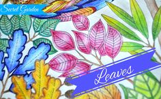 Secret Garden Colouring Book   Leaves   Jardim Secreto   Чарівний сад