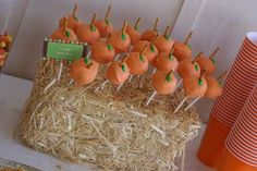 Clever idea to use hay bales to house cake pops Fall Birthday Parties, Halloween Birthday, Halloween Treats, Halloween Fun, Birthday Ideas, 2nd Birthday, Halloween Goodies, Halloween Table, Halloween Parties