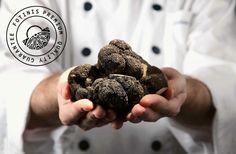 https://gr.pinterest.com/fotinisbasket/fotinis-truffle-collection/