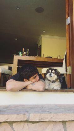 Calum Hood and his dog Duke 😍 Calum Hood, Calum Thomas Hood, Luke Hemmings, Anushka Sharma, Hrithik Roshan, Ranbir Kapoor, Aishwarya Rai, Alia Bhatt, 5 Seconds Of Summer