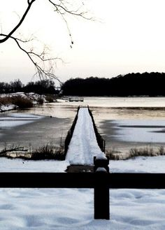 Crab Orchard Lake. Southern Illinois. #winter #paths #snow #Illinois