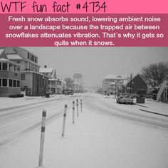 Why it gets quite when it snows - WTF fun facts