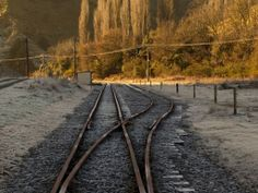 Forgotten World Adventures Adventure Tours, Railroad Tracks, Scenery, Island, Explore, World, Landscape, Adventure Travel, Islands