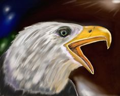 Corel Painter, Bald Eagle, Bird, Animals, Animales, Animaux, Birds, Animal, Birdwatching