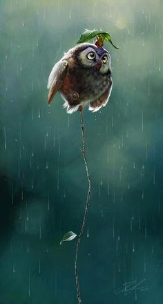 Eule Owl Illustration
