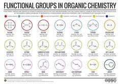 »Artista in vetrina: La chimica infografica di interesse composto