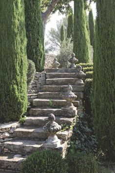 38 Amazingly Green Front-yard & Backyard Landscaping Ideas Get Basic Engineering, Home Design & Home Decor. Amazingly Green Front-yard & Backyard Landscaping Ideasf you're anything like us, y Formal Gardens, Outdoor Gardens, Garden Stairs, House Stairs, Garden Retaining Walls, Stone Stairs, Stone Walkway, Italian Garden, Dream Garden