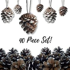 Pine Cone Ornaments - Set of 72 Small Brown Ornaments with Frosted, Snow Covered Tips - Christmas Hanging Pinecone Ornaments - Snow-Covered Pine-Cones >>> To view further for this item, visit the image link. (This is an affiliate link) Christmas Ornament Sets, Christmas Wreaths, Christmas Pictures With Lights, Lantern String Lights, Pinecone Ornaments, Wooden Easel, Wreaths And Garlands, Oyster Shells, Pine Cones