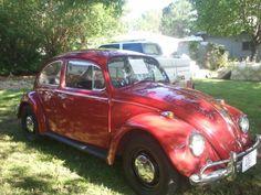 1967 VW Beatle
