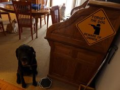 """Chapter 36 - The Book of Barkley - """"Branch Manager""""."""
