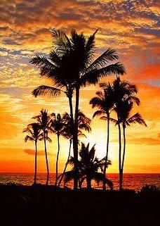 Sunshine, Sunset, Moon #cuudulieutransang | cuu du lieu tran sang | cứu dữ liệu trần sang | cong ty cuu du lieu tran sang | công ty cứu dữ liệu trần sang | http://cuudulieutransang.wix.com/trangchu