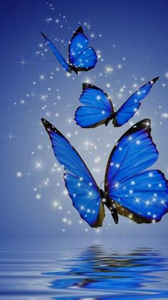 Butterfly Ringtones and Wallpapers - Free by ZEDGE™ Beautiful Flowers Wallpapers, Beautiful Nature Wallpaper, Pretty Wallpapers, Colorful Wallpaper, Beautiful Butterflies, Moonlight Photography, Nature Photography Flowers, Butterfly Wallpaper Iphone, Wallpaper Backgrounds
