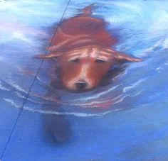 Dog swimming chalk pavement art