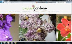 Somos tu vivero virtual.. Ofrecemos servicio de mantenimiento y creación de jardines, Landscape para proyectos, Instalación de grama, plantas, cactus y orquídea