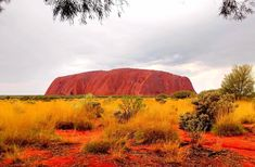 What to pack for Australian Outback Ayers Rock Australia, North Island New Zealand, New Zealand Adventure, Best Holiday Destinations, Visit New Zealand, Walkabout, Koh Tao, What To Pack, Night Photography