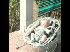 Pit Bull Puppy Cuddles with Baby | 1Funny.com