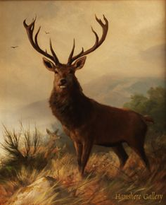 Click to see full size: Oil on canvas of Stag in Highland scene by Carl Frederick- Oil on canvas of Stag in Highland scene by Carl Frederick