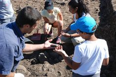 Outeiro do Circo: Campanha arqueológica de 2015 no Outeiro do Circo ...