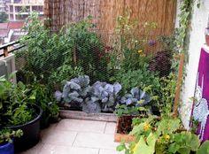 Balkon Garten-Ideen für Balkonsichtschutz mit Paravent oder Wand