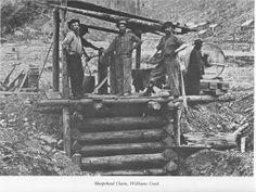 Gold prospectors Sheepshead Claim, Williams Creek