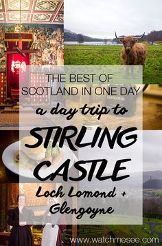 Are you keen to see the best of Scotland in a day and tick off castles, lochs and whisky from your bucket list? Check out this day trip to Stirling Castle!